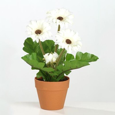restpartij kunstplanten gerbera 39 s in pot. Black Bedroom Furniture Sets. Home Design Ideas